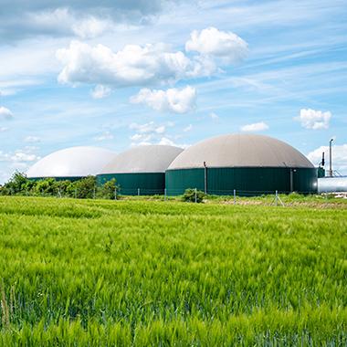 Impulso a los gases renovables